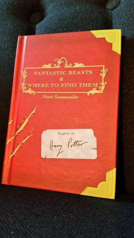 'Fantastic Beasts and Where to Find Them': A Spin-off Textbook of the 'Harry Potter' Series
